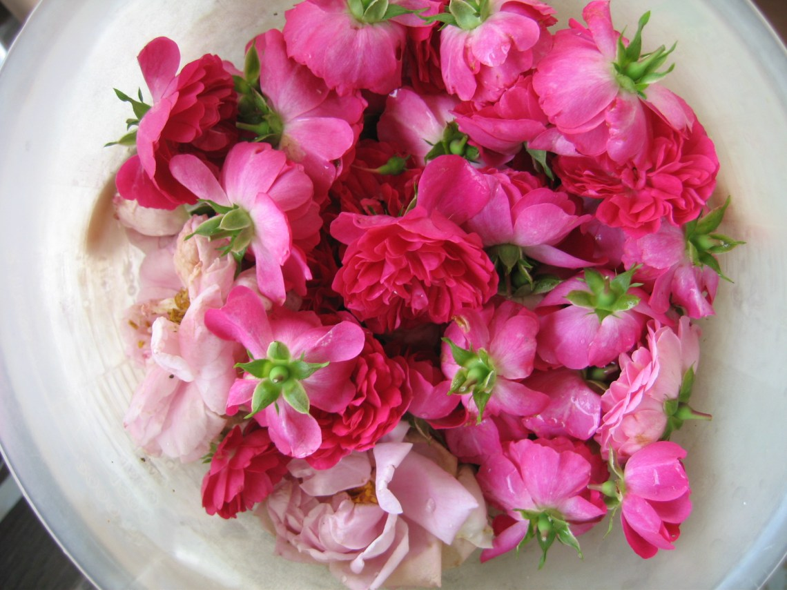 How To Make Your Own Rose Water To Refresh Your Skin- httpusefuldiyprojects.com(5)