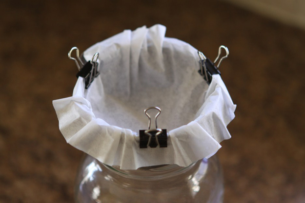 36 Surprisingly Awesome Ways to Use Coffee Filters in DIY Projects usefuldiyprojects.com homesthetics decor (27)