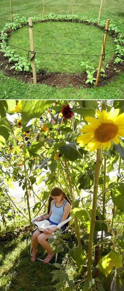 37 Insanely Cool Things To Do In Your Backyard This Summer usefuldiyprojects (16)