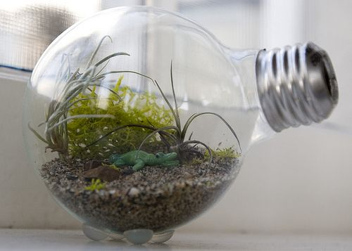 Having Fun With DIY Light Bulb Projects-usefuldiyprojects.com (11)