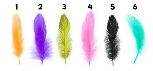 A Test Done By A Renowned Psychologist! Choose A Feather & Discover Your Hidden Personality…