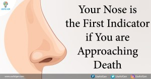Your Nose is the First Indicator if You are Approaching Death