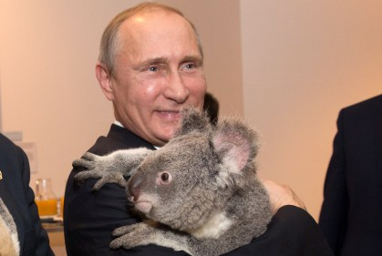 BRISBANE, AUSTRALIA - NOVEMBER 15: Australia's Prime Minister Tony Abbott and Russia's President Vladimir Putin meet Jimbelung the koala before the start of the first G20 meeting on November 15, 2014 in Brisbane, Australia. World leaders have gathered in Brisbane for the annual G20 Summit and are expected to discuss economic growth, free trade and climate change as well as pressing issues including the situation in Ukraine and the Ebola crisis. (Photo by Andrew Taylor/G20 Australia via Getty Images)