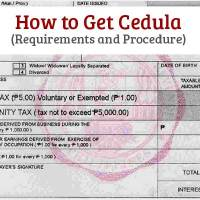 How to Get Cedula