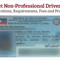 Get Non-Professional Drivers License