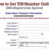 How to Get TIN Number Online - BIR eRegistration System