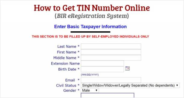 How to Get TIN Number Online - BIR eRegistration System