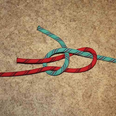 Double sheet bend step by step how to tie instructions