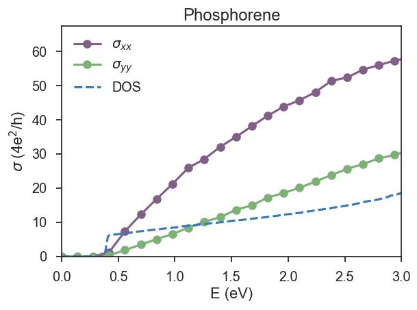 phosphorene
