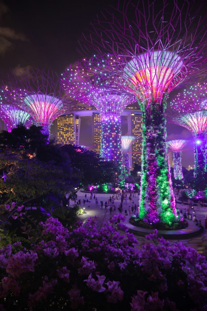 Garden's by the Bay, Singapore during nighttime