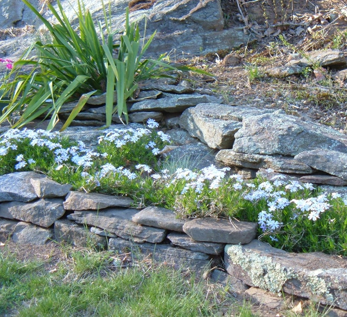 How to Design a Rock Garden: Landscaping With Rocks and ... on Backyard Rocks  id=60137