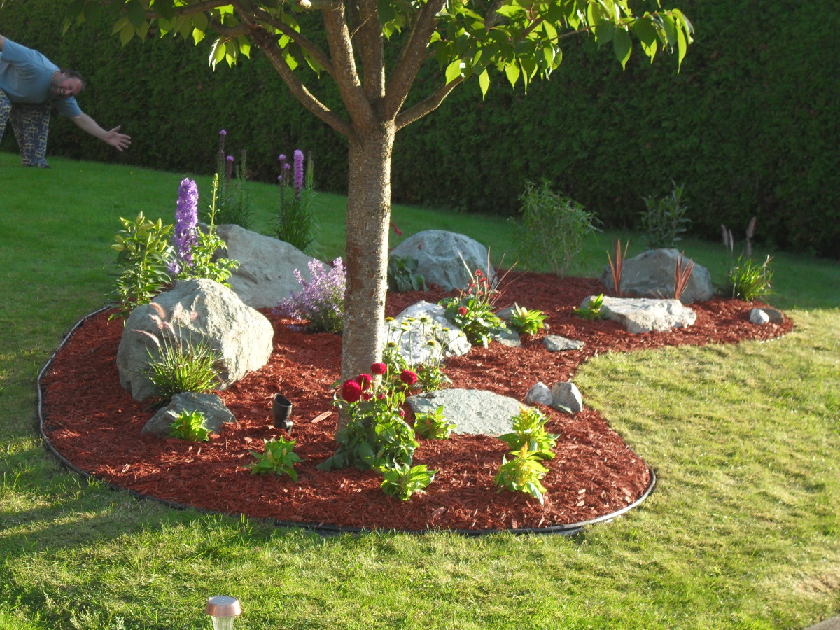 Easy DIY Landscaping: Build a Rock Garden | Dengarden on Backyard Landscaping Ideas With Trees id=58728