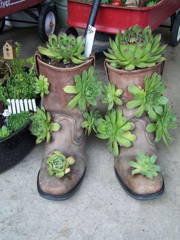 succulent garden ideas in boots