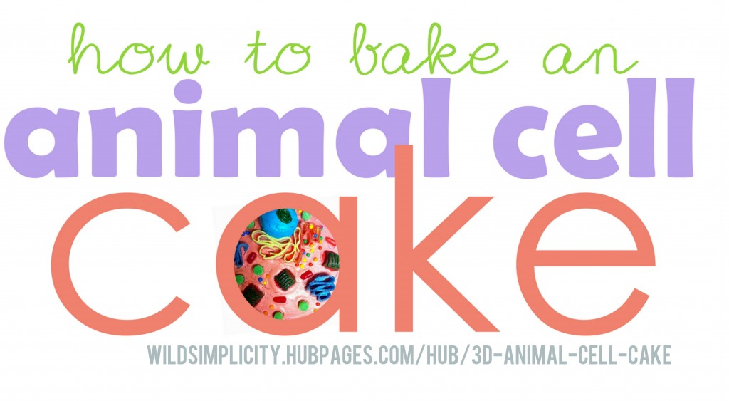 Types Cake Sprinkles