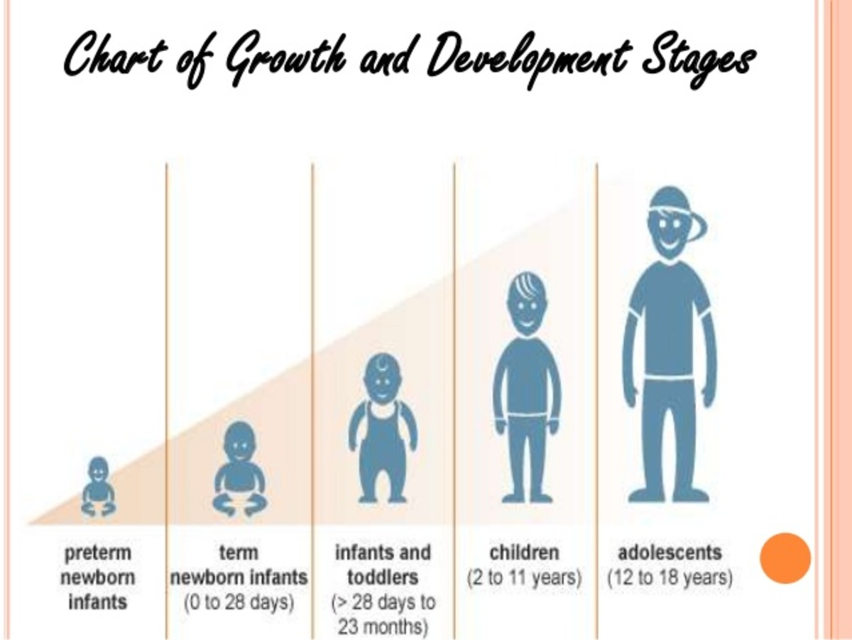 Early Childhood Moral Development