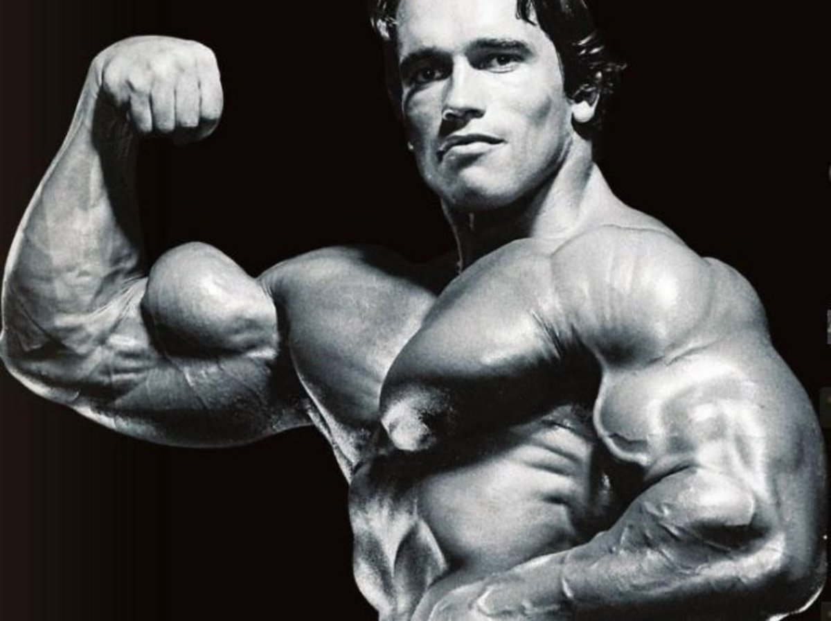 Bicep Exercises and Workout routines
