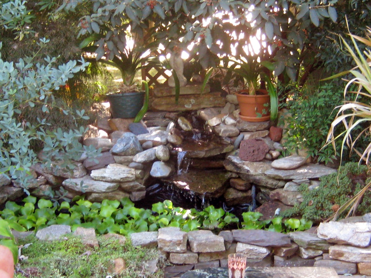 How to Create a Small Backyard Pond | Dengarden on Small Backyard Pond  id=39420