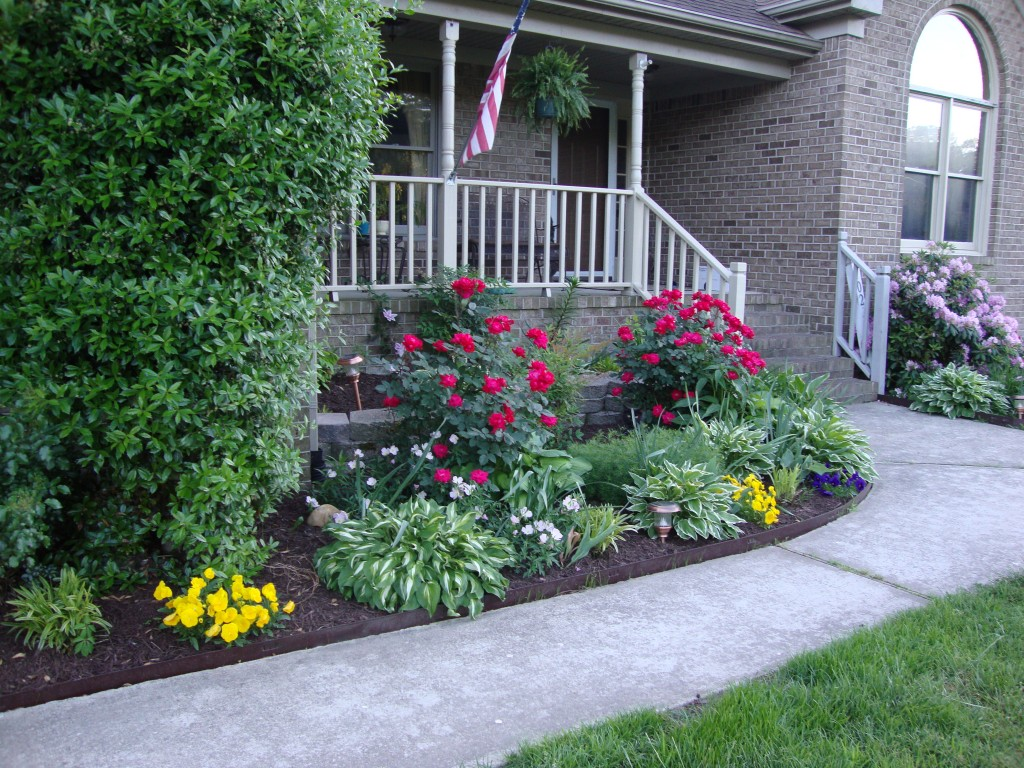 A Yard Full of Color: Ideas on How to Effectively Use ... on Tree Planting Ideas For Backyard id=92215