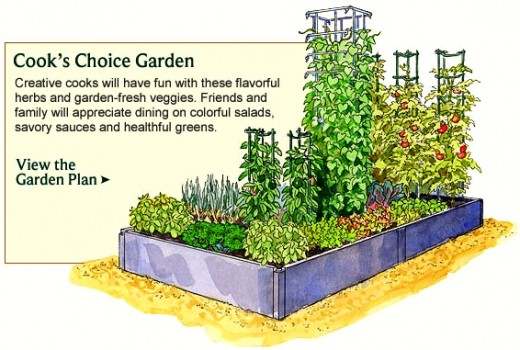 Vegetable Garden Planner - Layout, Design, Plans for Small ... on Backyard Layout Planner  id=82726