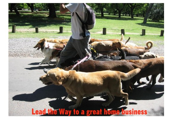 How to be Successful in the Pet Sitting Home Business