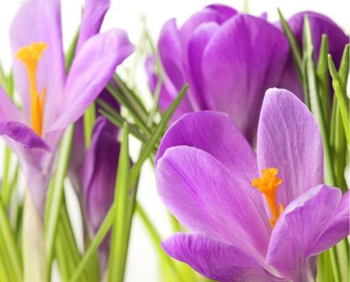 Happy Easter Speeches 2021