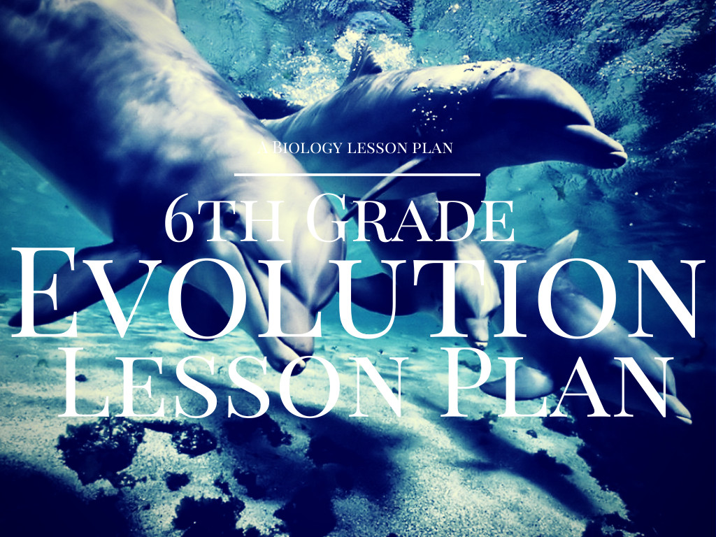 Evolution Hands On Middle School Science Lesson Plan