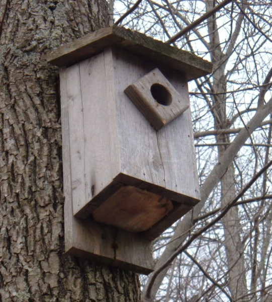 How to Build a Bluebird House  Nest Box Plans   FeltMagnet Bluebird House