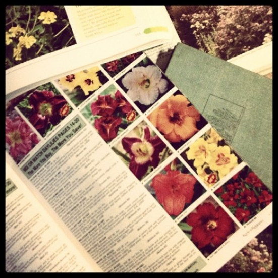 Plant Catalogs have plenty of garden information in them, and often include some of the most helpful reference books for sale.