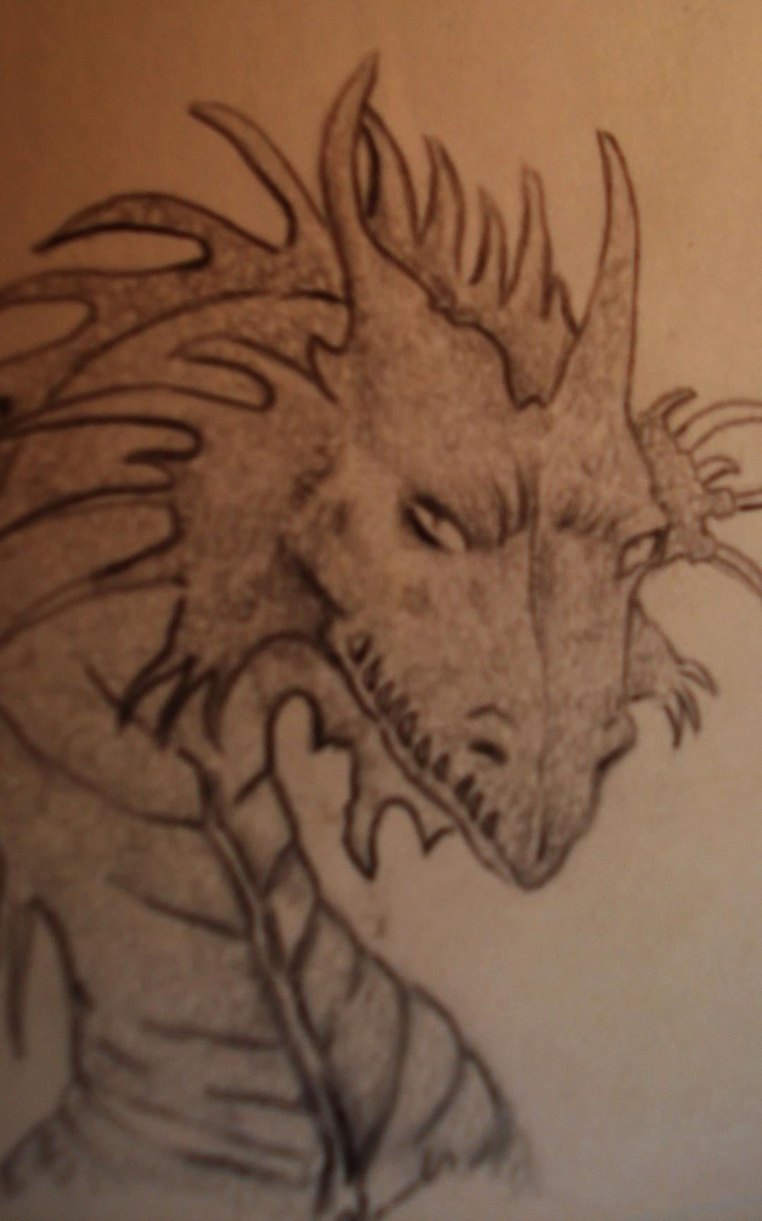 dragonsketch