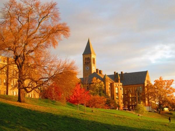 cornell university - HD1024×768