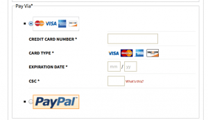 Credit Card Fields Displayed