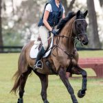 Making Flatwork Fun For Your Young Horse
