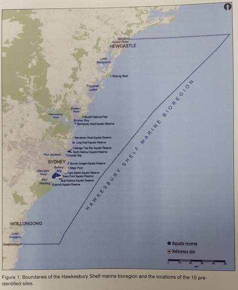 Hawkesbury Shelf marine bioregion