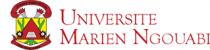Marien Ngouabi University logo