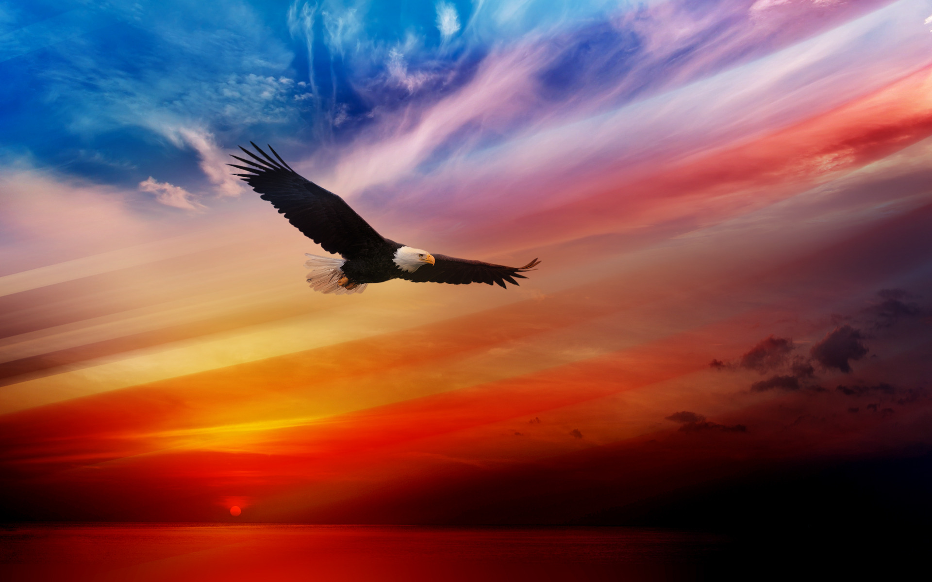 American-Eagles-Wallpaper