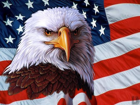 American Flag Eagle Wallpaper