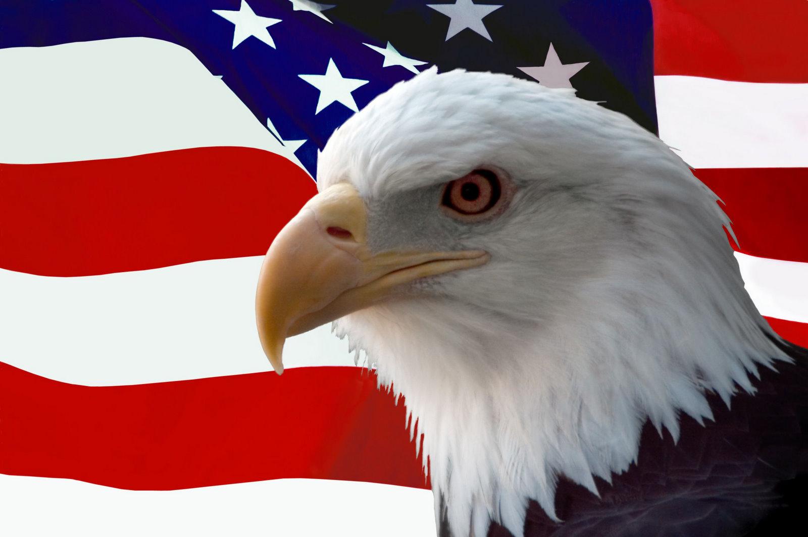 EagleAndFlag