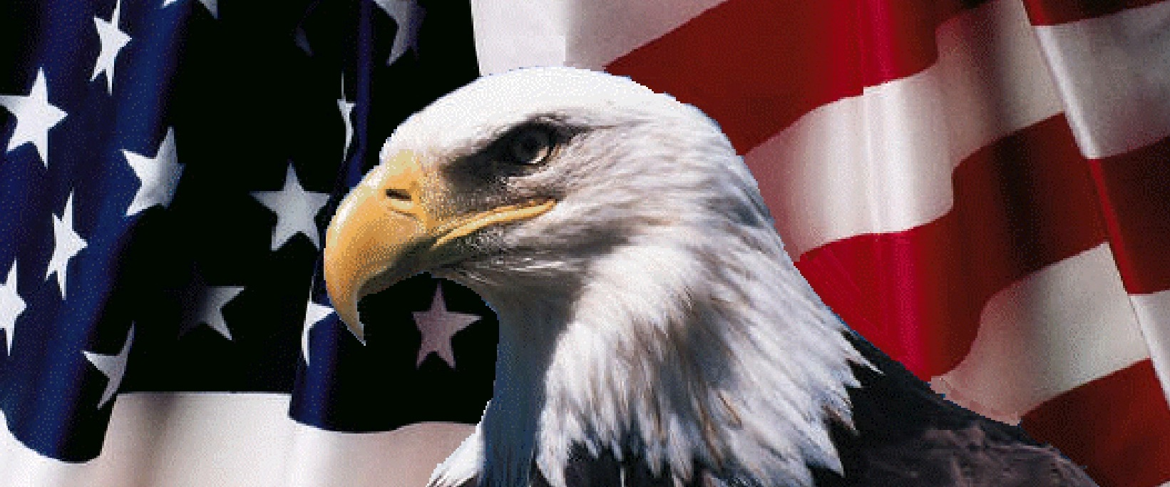 american-flag-and-eagle-2a