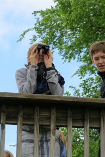 Ecology school students have plenty of opportunities to take a moment to view and observe the diverse wildlife that call Presquile National Wildlife Refuge home.