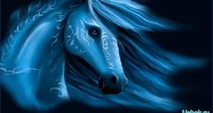 Как встречать год синей лошади и в чем