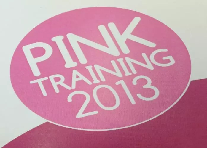 Pink Training 2013 Feedback