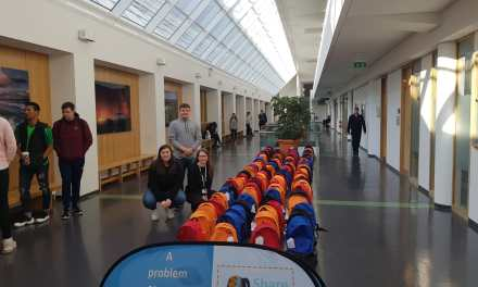 USI Encourage Students to 'Share the Load' on International Men's Day