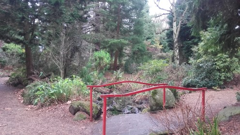 Belfast botanic garden.