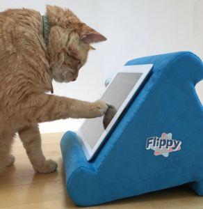 Flippy cat - Juliette Fassett