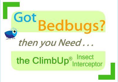 Got Bedbugs - CLIMBUP