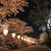 金沢市兼六園の歴史と見どころを紹介!四季折々の美しさを詳細解説!