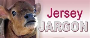JerseyJargonColor