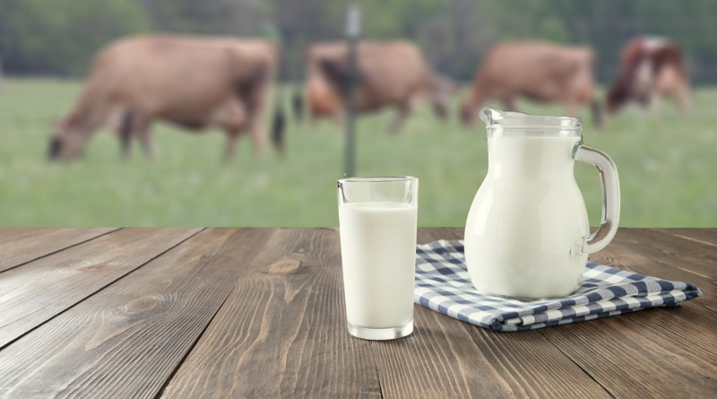 National All-Jersey Inc. Shares Covid-19 Dairy Resources