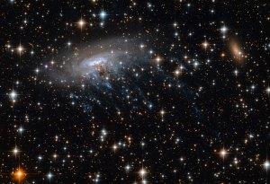Galaksi ESO 137-001 puskee läpi tähtijoukon ja jättää taaksensa sinisen vanan. Kuva: ESA Hubble.