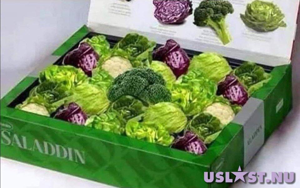 Saladdin - Även veganer måste få lite godis till jul